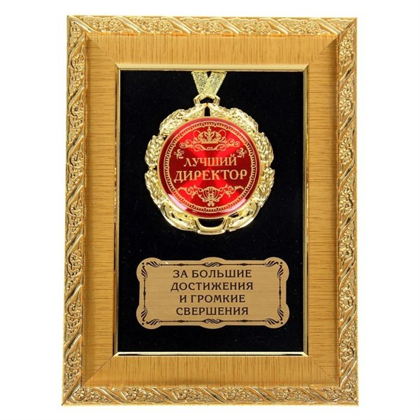 """Медаль в рамке """"Лучший директор"""" - фото 205215"""